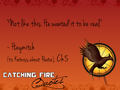Catching Fire quotes 1-20