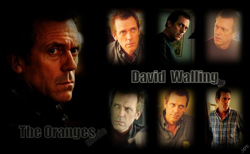 David Walling, The Oranges