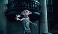 Dobby - harry-potter photo