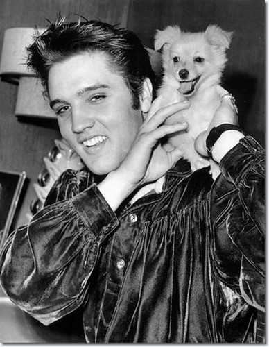 Elvis Presley and 'Sweet Pea' the dog, October 18, 1956.