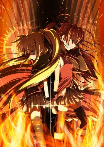 Fate and kyouko