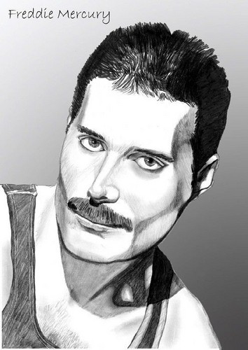 Freddie fan art