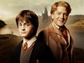 Gilderoy Lockhart Wallpaper