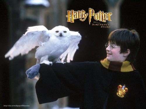 HP Heroes