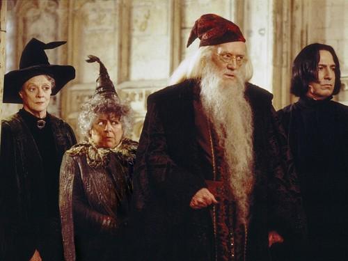 Hogwarts Professors achtergrond