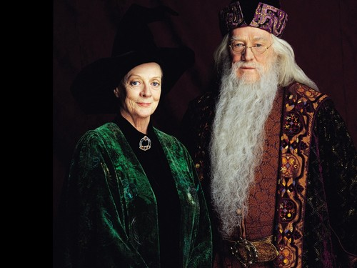 Hogwarts Professors karatasi la kupamba ukuta