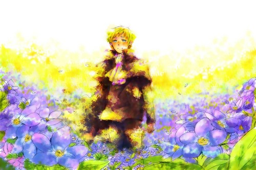 hetalia fondo de pantalla entitled Holy Roman Empire
