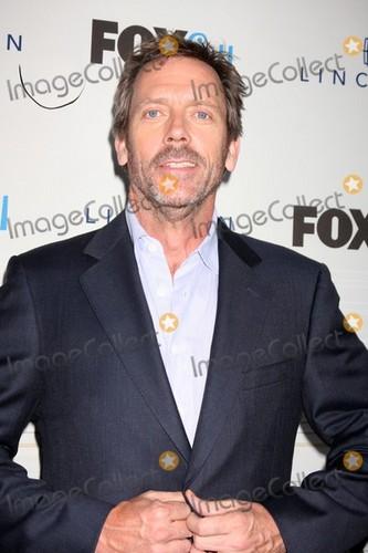 Hugh Laurie 2010