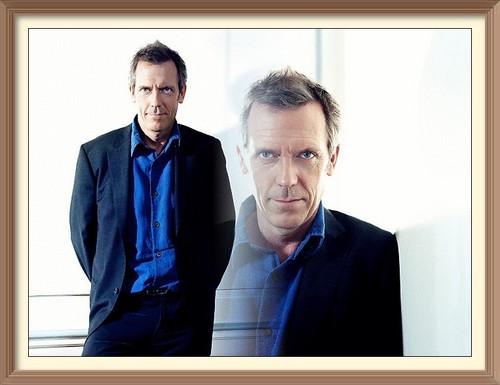 Hugh Laurie người hâm mộ art