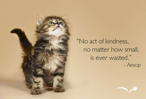 Kindness - to Berni, one of the kindest people I know