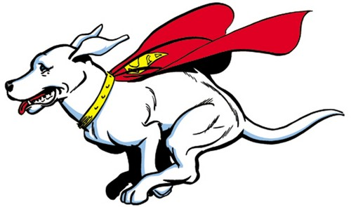 Krypto running