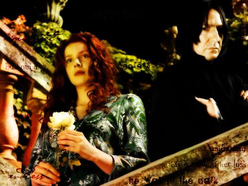Severus Snape wallpaper titled Lily & Severus