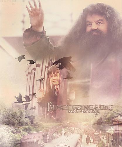 Harry & Hagrid