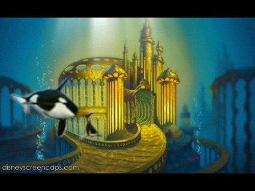 Orcas in Atlantica
