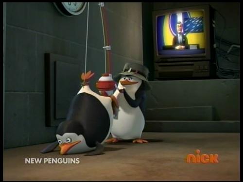 पेंगुइन Fishing