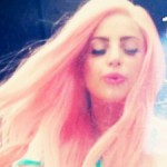 rosa Gaga