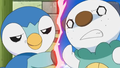 Piplup! XD