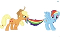 Rainbow Dash And Applejack - rainbow-dash wallpaper