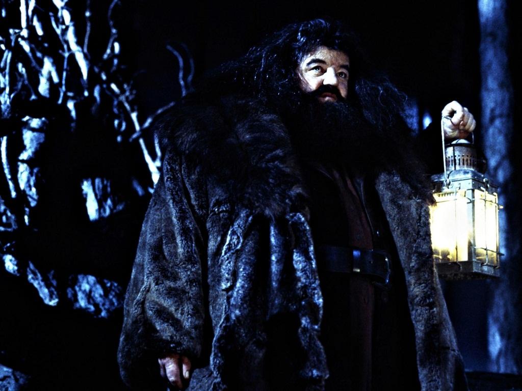 Rubeus Hagrid wolpeyper