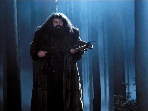 Hogwarts Professors wallpaper titled Rubeus Hagrid Wallpaper
