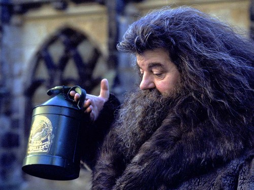 Rubeus Hagrid দেওয়ালপত্র