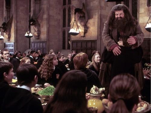 Rubeus Hagrid 壁紙