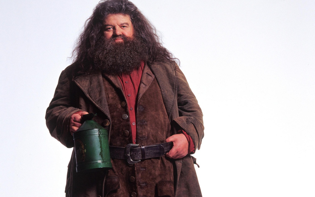 Rubeus hagrid wallpaper hogwarts professors wallpaper What house was hagrid in