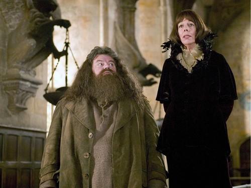 Rubeus Hagrid fond d'écran
