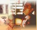 Stelena forever - stefan-and-elena photo
