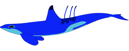 Stitch (Killer Whale)