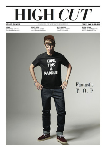Choi Seung Hyun wallpaper entitled TOP our model