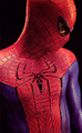 The Amazing Spider-Man - spider-man photo