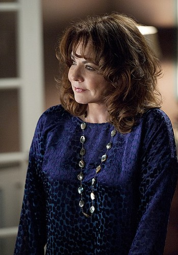 """The Good Wife - 4x09 -""""A Defense of Marriage"""" - Promotional picha"""