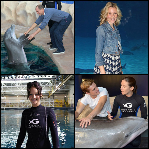 The Hunger Games stars at the Atlanta Georgia Aquarium
