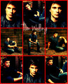 Tom Welling - hottest-actors fan art