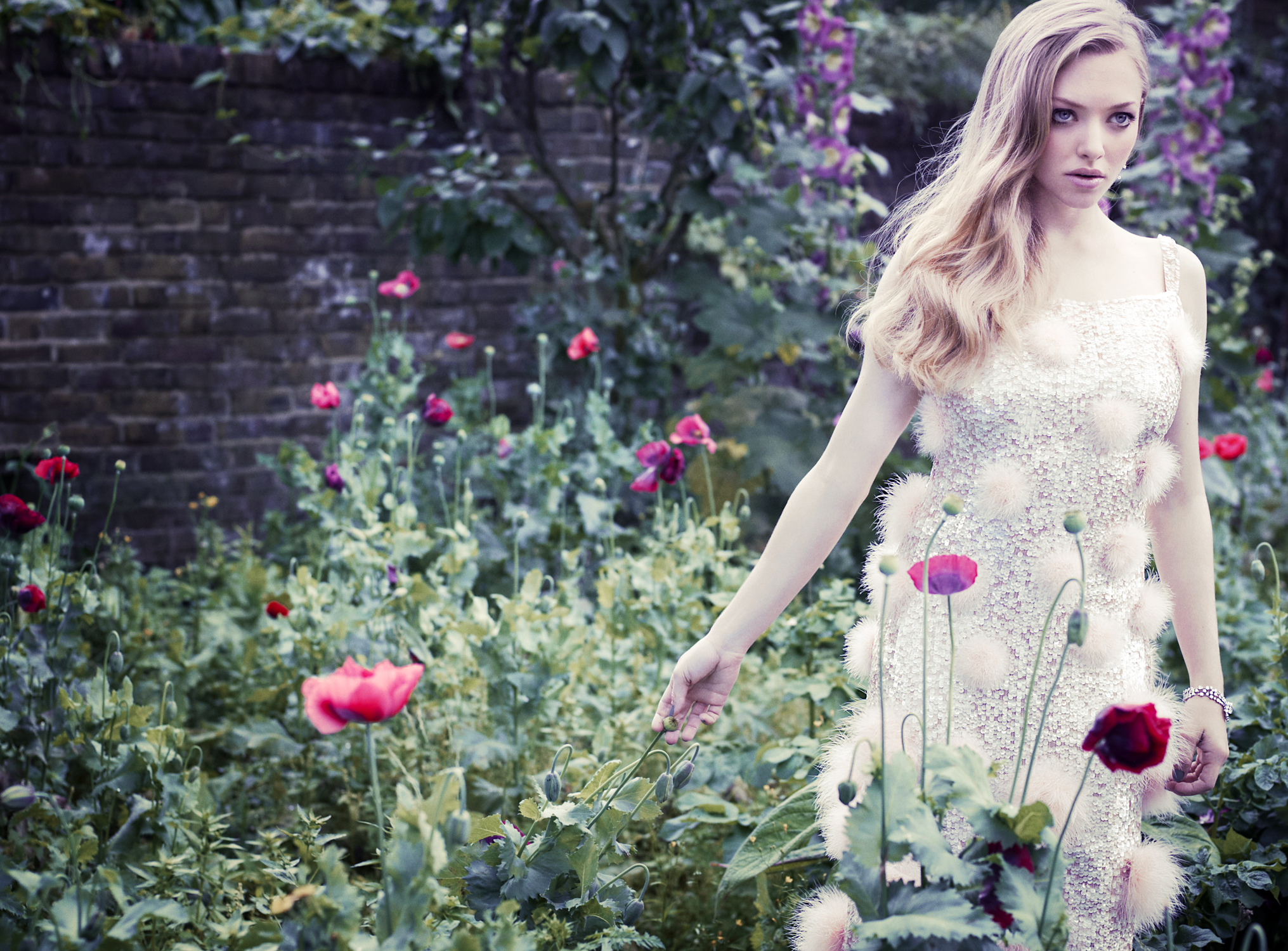 amanda seyfried images vanity fair uk 2012 hd wallpaper