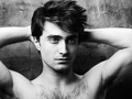 Warrick Saint Photoshoot - daniel-radcliffe photo