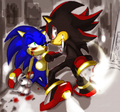 You're Finished! - shadow-the-hedgehog photo