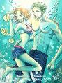 Zoro Nami Underwater