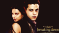 twilight-series - breaking dawn wallpapers wallpaper