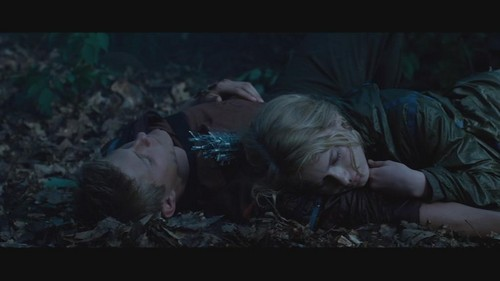 cato and glimmer relationship quiz