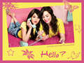 demi and selena wallpaper - selena-gomez-and-demi-lovato wallpaper