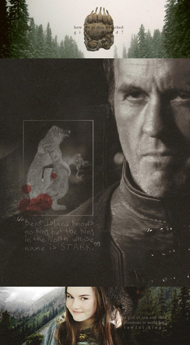 Stannis Baratheon & Lyanna Mormont