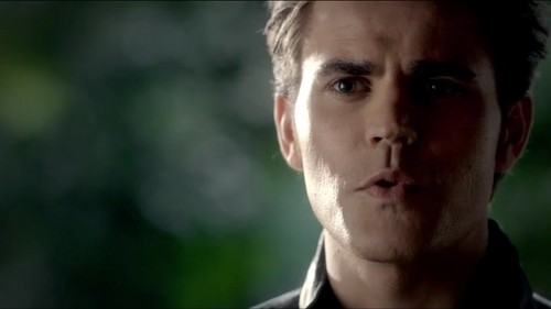 love the vampire diaries