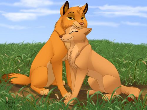 simba and nala wolf