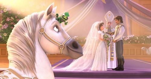 wedding <3 Gusot