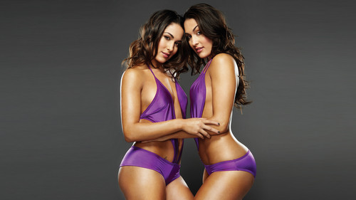 WWE karatasi la kupamba ukuta possibly containing a maillot, a swimsuit, and a leotard titled 50 most beautiful people in Sports Entertainment: #39 The Bella Twins