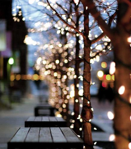 ★ Christmas lights and decorations ☆