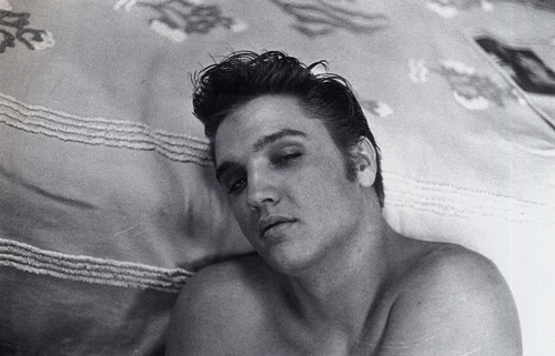 Elvis Presley hình nền possibly with skin called ★ Elvis ☆