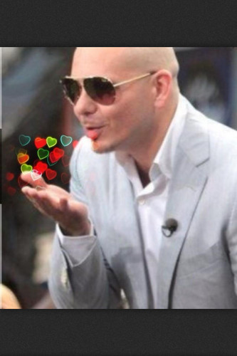 Pitbull Rapper Images Pitbull HD Wallpaper And Background